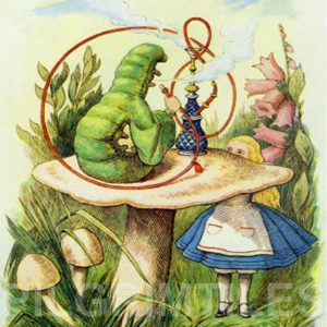 Alice In Wonderland Tile 021