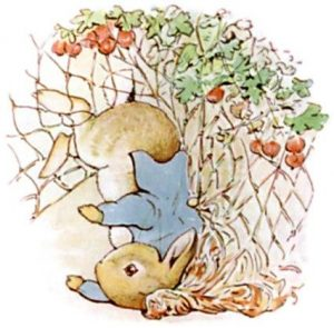 Peter Rabbit Tile 16