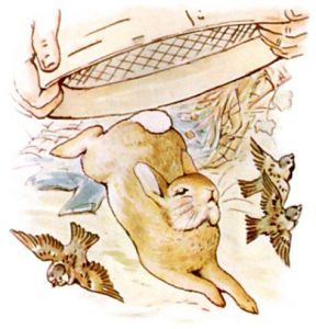 Peter Rabbit Tile 18