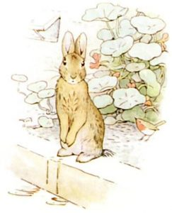 Peter Rabbit Tile 22