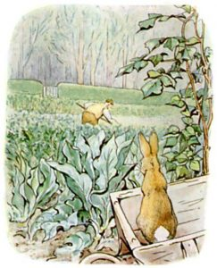 Peter Rabbit Tile 25