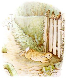 Peter Rabbit Tile 26