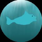 Dolphinator 1. Avatar